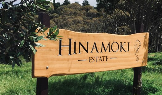 Hinamoki Estate House and Land Packages